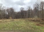 16 acres Nothern Zone Hunting Land For Sale, Williamstown, NY!