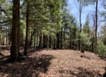 Near Snowmobile Trail with Shed and Electic Available on Year-Round Road!