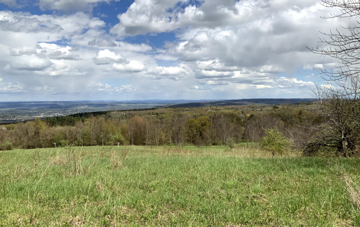20 acre Hunting Land for Sale with Moutain Views, Columbia, NY!
