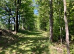 63 acres Northern Zone Hunting Land for Sale with Camp, Constantia, NY!