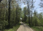 Recreational Property with ATV trails, Apple Trees, and a Mile of Road Frontage!