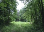 105 acres Northern Zone Hunting Land for Sale, De Kalb NY!