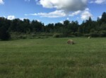 Perfect Lot to Park a Camper, Build a Home, or Start Your Homestead!