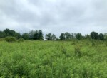 Tug Hill Country Home or Cabin Site with Septic, Well, and Driveway!
